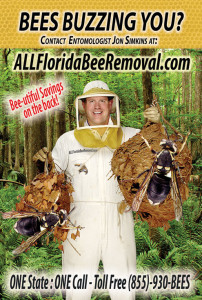 A postcard for a bee keeper