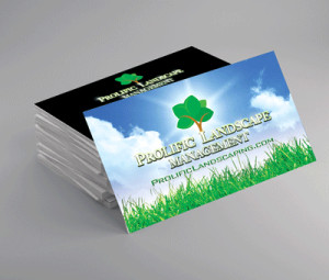 Full color business cards, high gloss UV, EliteFlyers.com