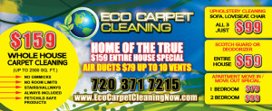 A Flyer for a cleaning service, 16pt card stock flyers, EliteFlyers.com