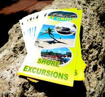 Tour brochures
