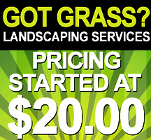 A sample of a landscaping flyer design