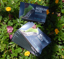 Using flyers for marketing, high end flyers, EliteFlyers.com
